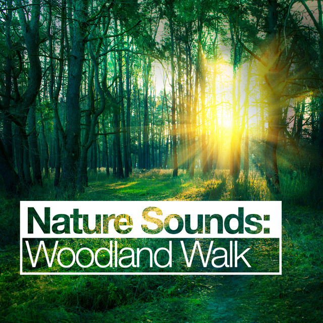 Nature Sounds: Woodland Walk Albumcover