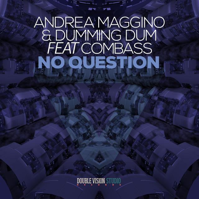 Andrea Maggino