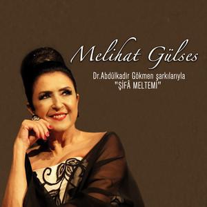 Şifa Meltemi / Dr. Abdülkadir Gökmen Şarkılarıyla Albümü