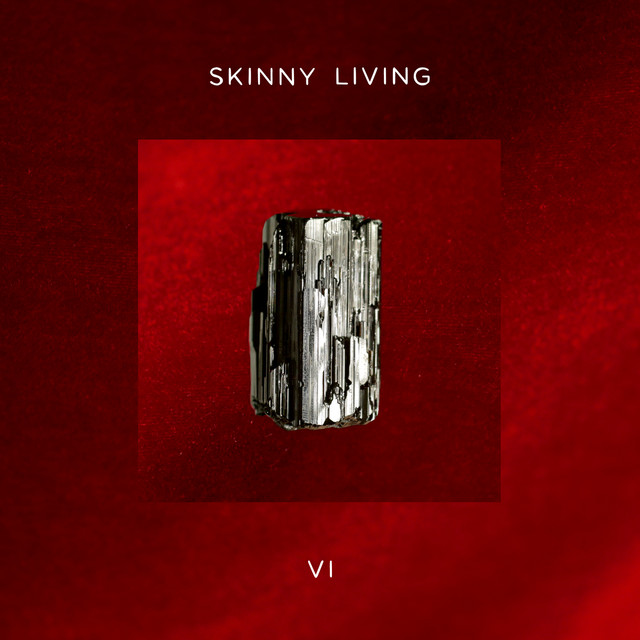 Album cover for 6 by Skinny Living