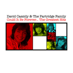 David Cassidy, The Partridge Family Walking In The Rain cover