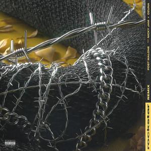 rockstar (Remix) Albümü