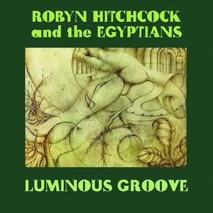 Luminous Groove