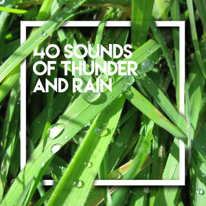 40 Sounds of Thunder and Rain