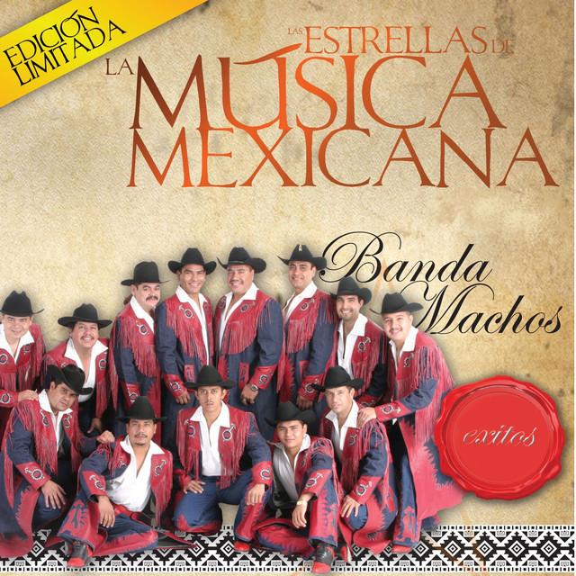Las Estrellas de la Musica Mexicana (USA)