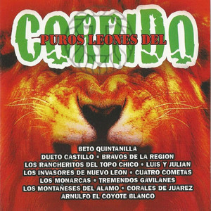 Puros Leones Del Corrido album