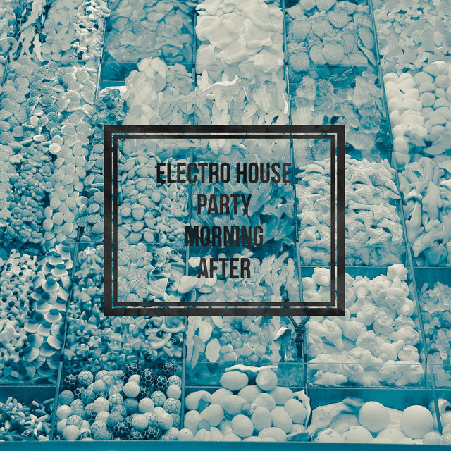 Electro House Party Vol. 2 (Morning After)