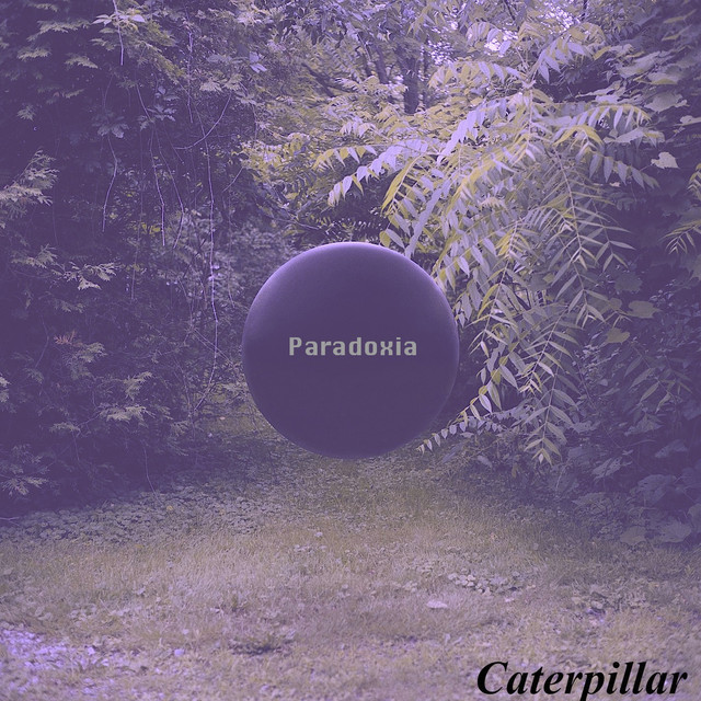 Paradoxia A Song By Caterpillar On Spotify