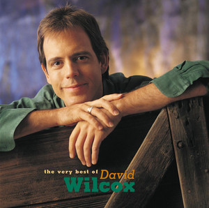 The Very Best of David Wilcox album
