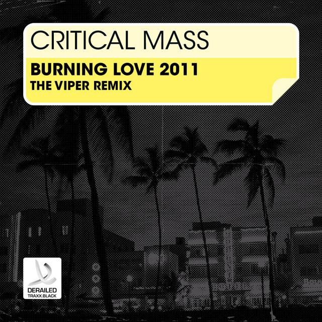 Burning Love 2011 (The Viper Remix)