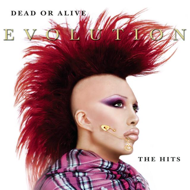 Dead or Alive Evolution: The Hits album cover