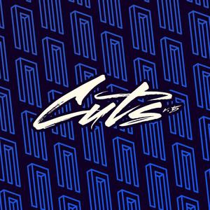 DJ Sneak presents Magnetic Cuts v.5 album