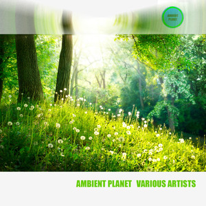 Ambient Planet Various Artists Albumcover