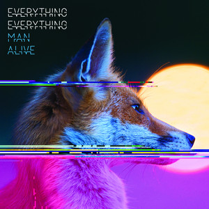 Everything Everything NASA Is on Your Side cover