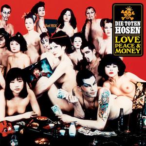 Die Toten Hosen More & More cover