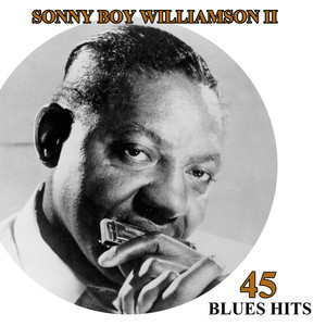 45 Blues Hits