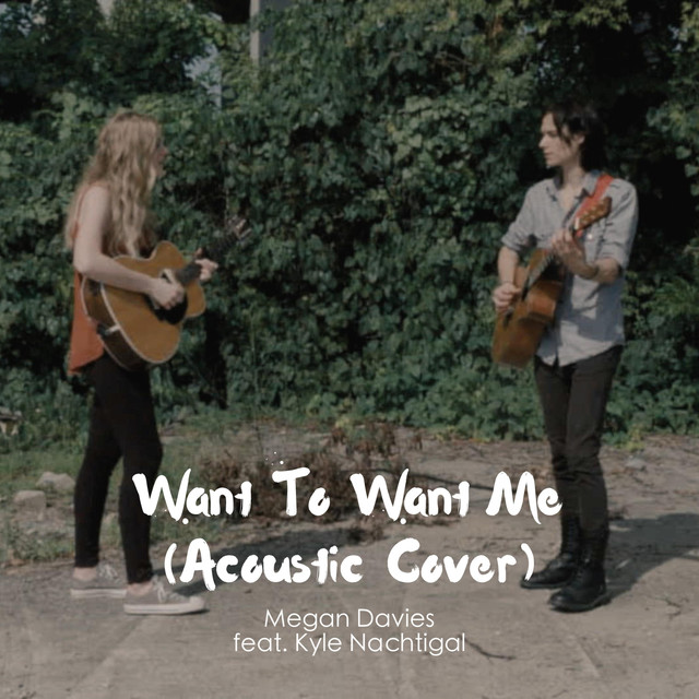 Want to Want Me (Acoustic Cover)