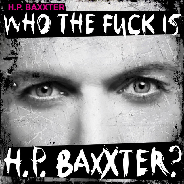 Who The Fuck Is H.P. Baxxter?