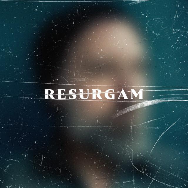 Fink Resurgam album cover