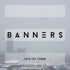 Banners Into the Storm cover
