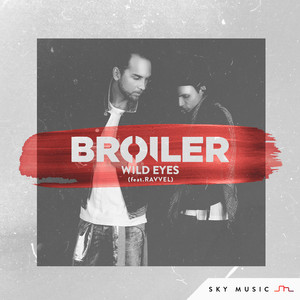 songtexte broilers