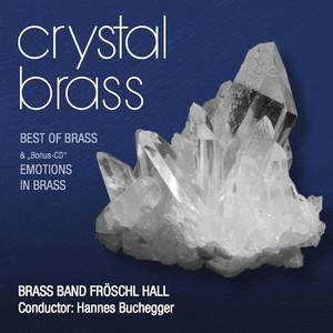 Brass Band Fröschl Hall, Tobias Buchegger Sing, sing, sing cover