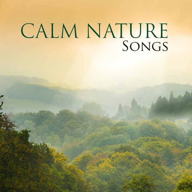 Calm Nature Songs Albumcover