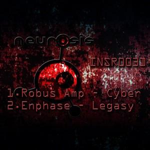 Robus Amp & Enphase