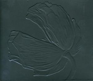 Release (Special Extended Edition) Albümü
