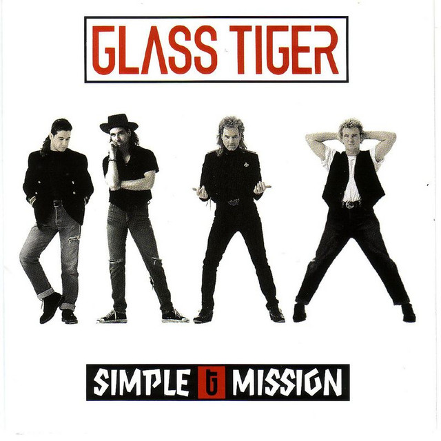 Simple Mission cover