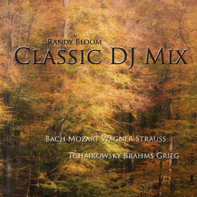 Classic DJ Mix - Piano & Orchestra by Various Artists on Spotify