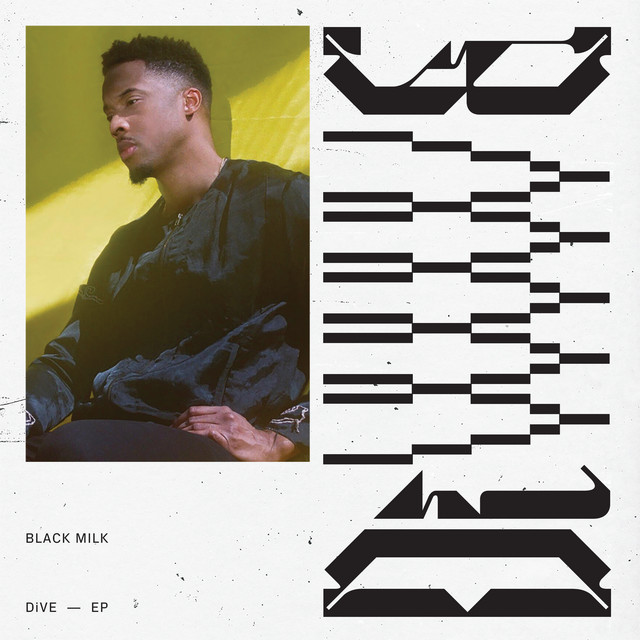 Album cover for DiVE by Black Milk