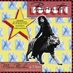 Born to Boogie Albümü