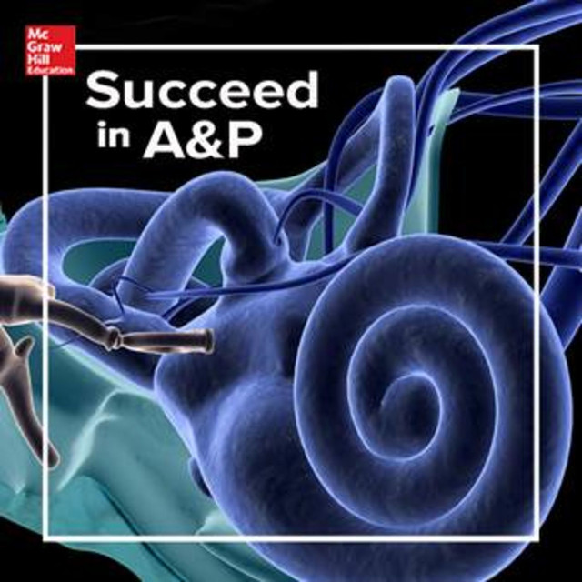 Assessments With Intention In Anatomy Physiology An Episode From