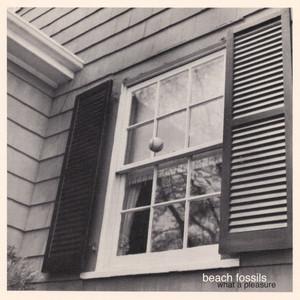 What a Pleasure Albumcover