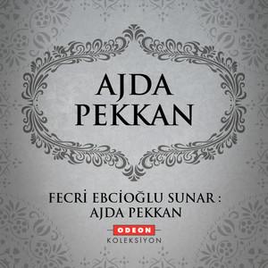 Fecri Ebcioğlu Sunar: Ajda Pekkan Albümü