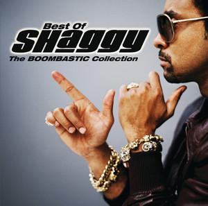 Shaggy Church Heathen cover