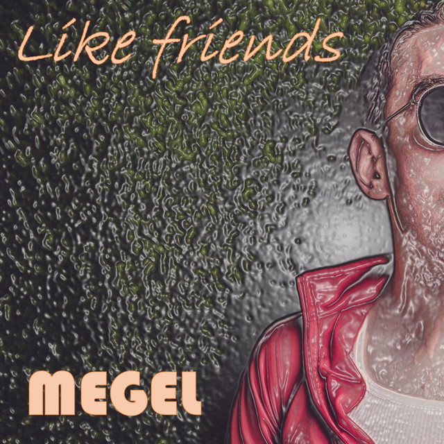 Album cover for Like Friends (Deluxe Edition) by Megel