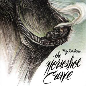 The Horseshoe Curve