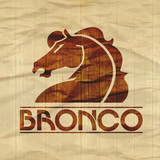 Bronco profile