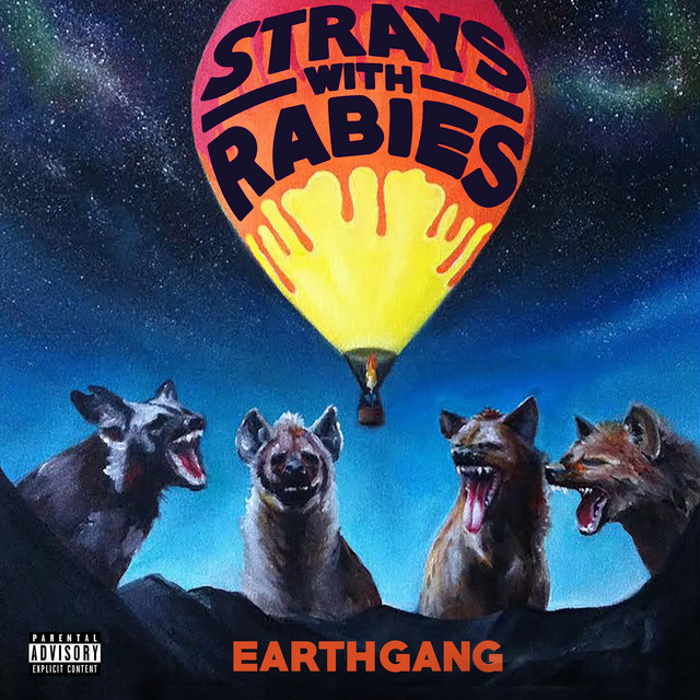 Image result for strays with rabies