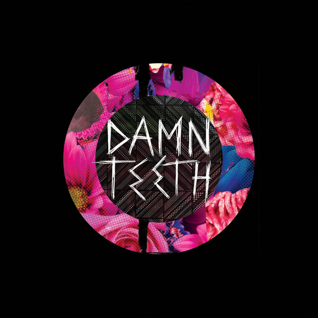 Damn Teeth tickets and 2019 tour dates
