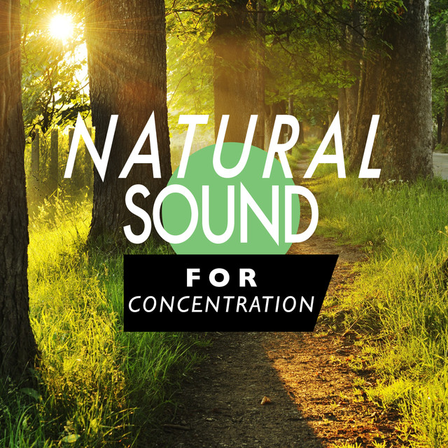 Natural Sound for Concentration Albumcover