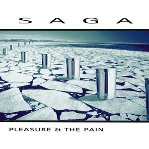 Pleasure and the Pain (2016 Version) album
