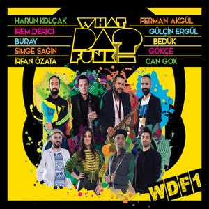 WDF1 Albümü