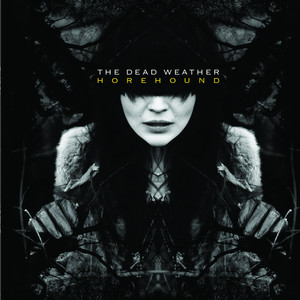 The Dead Weather 60 Feet Tall cover