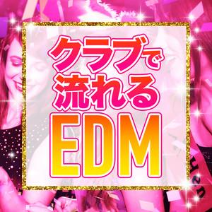 クラブで流れるEDM album