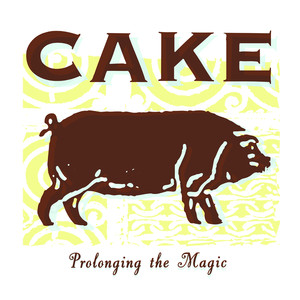 Jolene Cake Lyrics