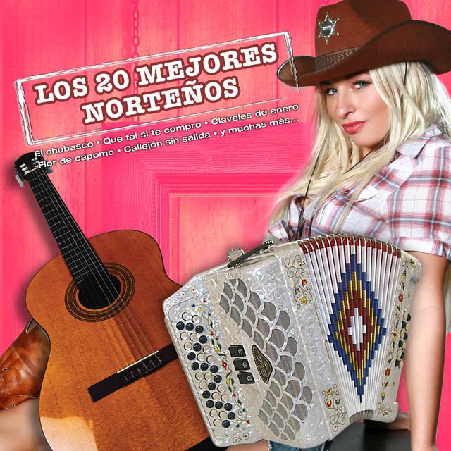 Various Artists Los 20 Mejores Norteños album cover