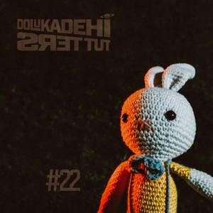 #22 Albümü